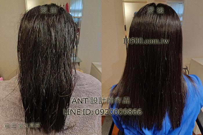 資生堂水質感離子燙EX1系列(直髮)